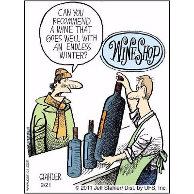 Wine Shop Cartoon- Can you recommend a wine that goes well with an endless winter?
