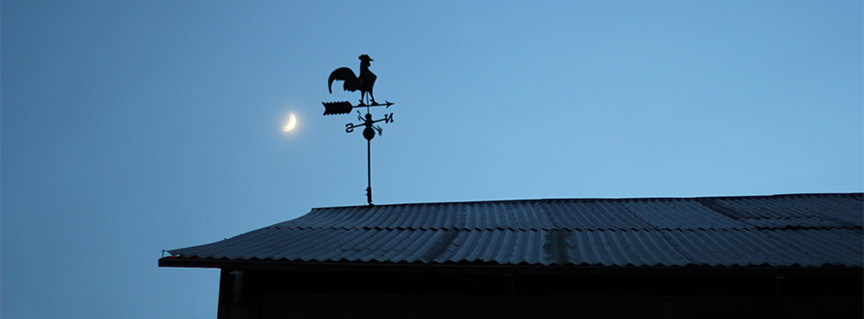 Crescent moon in night sky by Chicken weathervane