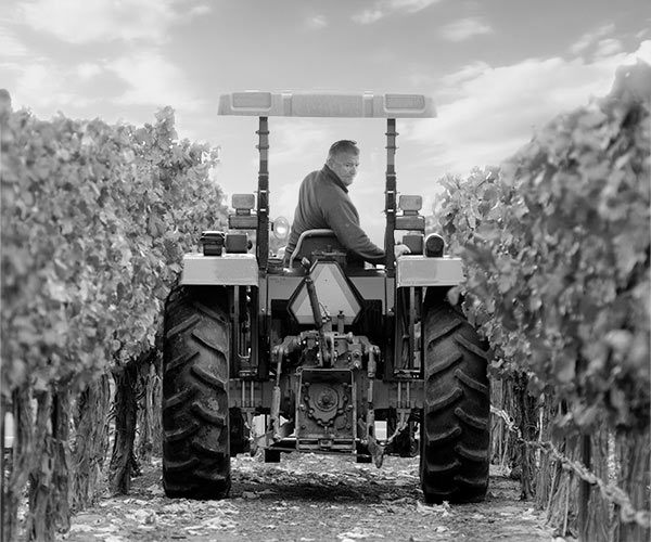 Gregg Alger on a tractor in the Huston Vineyards estate vineyard