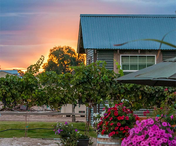 Huston Vineyards tasting room at sunset